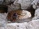 Velice romantické okno těsně pod Turskou gorou (2 251m)