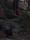 Vychylovske Skalie pod Rycerzowou